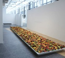 Fallen by Jane Hammond, Wexner Center, Columbus, Ohio