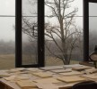 The view on a foggy winter day